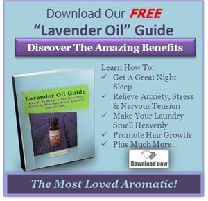 Lavender_Oil_Ebook_Download_Banner_300x290