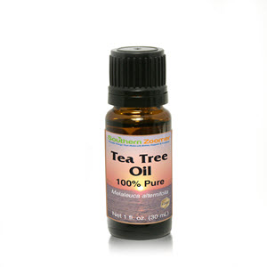wholesale_teatreeoil_300x300